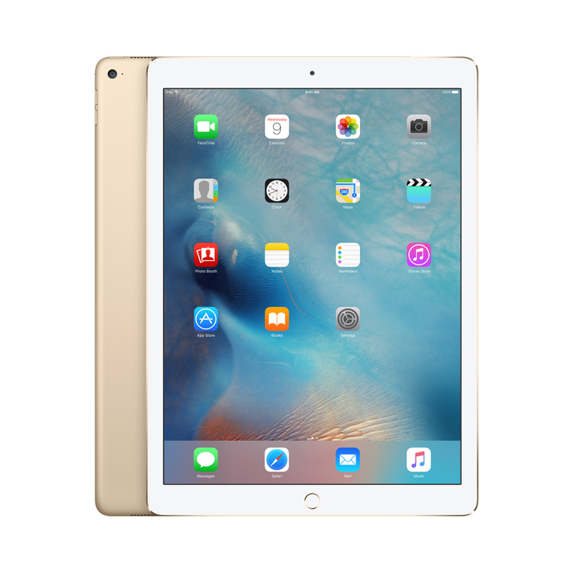 12.9-inch iPad Pro Wi-Fi 256GB - Space Grey Wifi